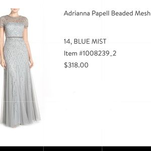 Beautiful Adrianna Papell Gown